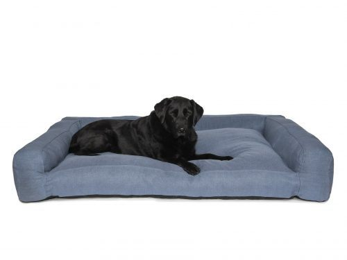 Blue Sofa Style Dog Bed with Black Labrador