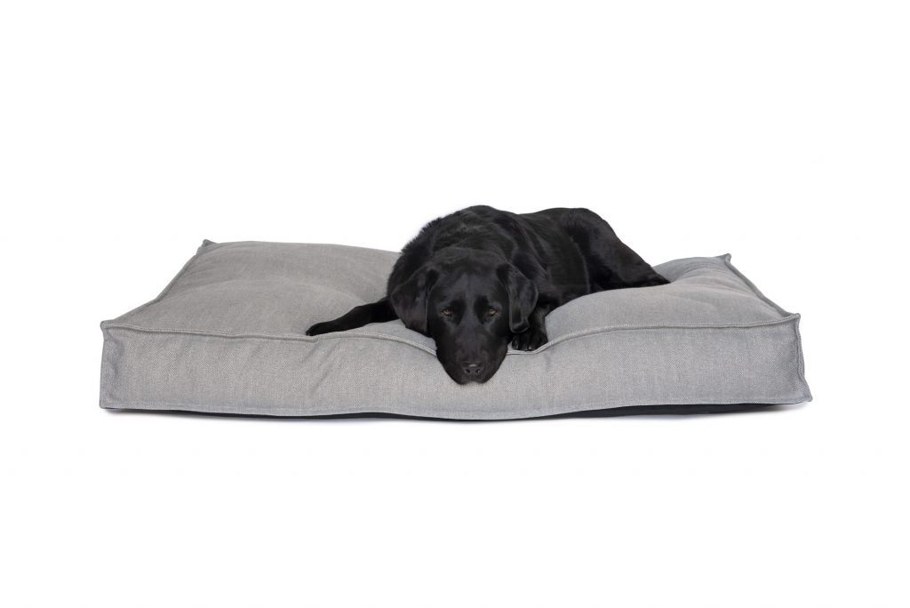 Light Grey Cushion/Mattress Style Dog Bed with Black Labrador