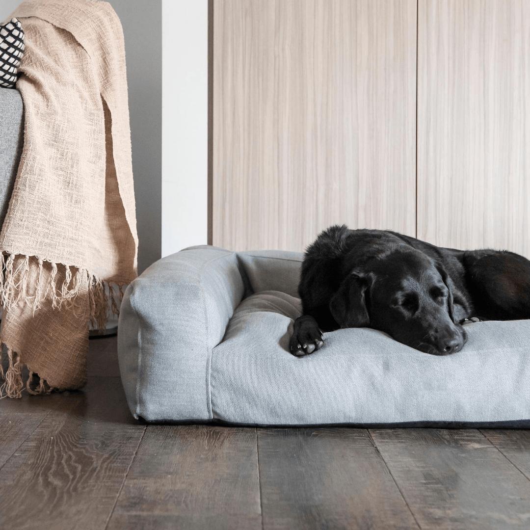 New Summer Pet Beds